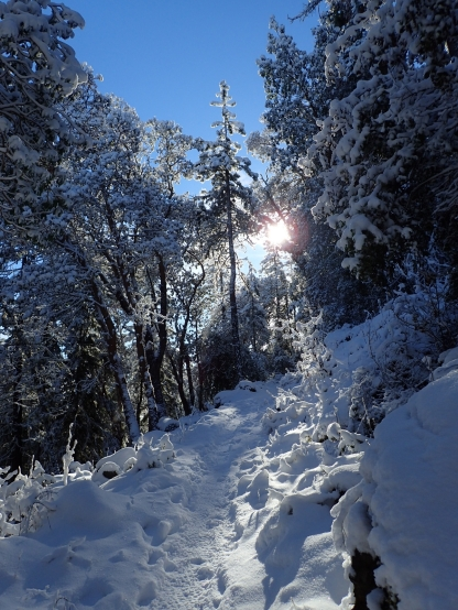 Roxy Ann Peak, Oregon